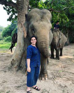 Jinan Sous and elephant